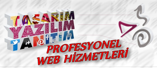 PROFESYONEL İSTANBUL WEB TASARIM HİZMETLERİ